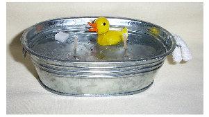 duckinbucket.jpg